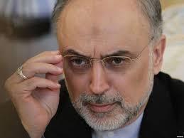 صالحی: توافق هسته ای با توجه به منافع ملی تحقق یافت
