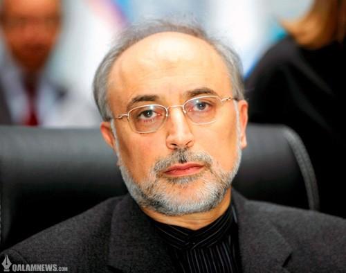 صالحی: تغییر رفتار با عزم دولت آقای روحانی منجر به توافق شد