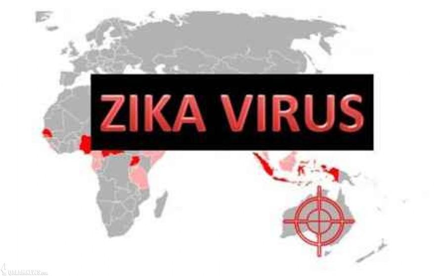هشدار سازمان جهانی بهداشت درباره ویروس زیکا