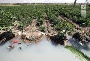 احداث شهرک سبزیکاری همدان در سایه اماواگرها/ ضرورت قطع تولید سبزی با طعم فاضلاب