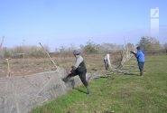 ۱۳ هزار مترمربع از اراضی ملی دماوند رفع تصرف شد