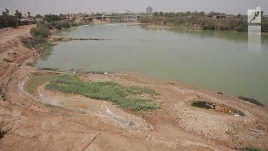 برنده جدال حفاظت محیط زیست و سازمان آب و برق خوزستان کیست؟