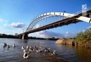 پل هلالی جمعهها محل پیاده روی شود/ پلی که  نماداهواز قدیم است
