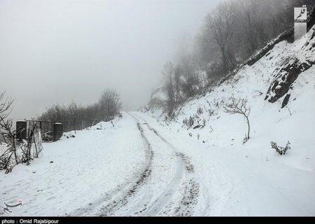 راه ارتباطی ۳۷۲ روستای الیگودرز بر اثر بارش سنگین برف مسدود شد