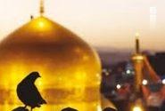 خوش خبری از جوار امام هشتم(ع) برای مادر شهید چشمانتظار
