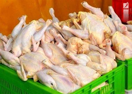 نیاز روزانه مردم اصفهان به مرغ بین ۵۰۰ تا ۶۰۰ تن بود