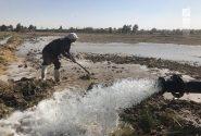 نگرانی کشاورزان دشت ورامین نسبت به کاهش سهمیه و حقابه سد ماملو