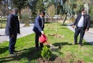 ۶۳ بوستان فعال در منطقه سه شهرداری قم