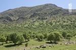 بهره برداری از نخستین پارک آبخیز استان مرکزی در اراک