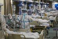 فدایی: ۶ هزار و ۶۰۰ دُز واکسن کرونا به اصفهان رسید
