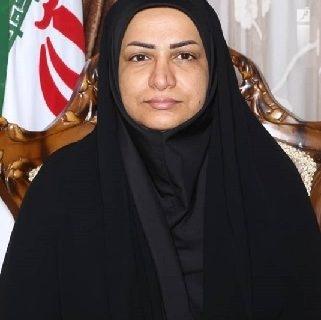 نقش خبرنگاران و رسانه ها در رقم خوردن حماسه ۲۸ خرداد ،مهم و تاثیر گذار بود